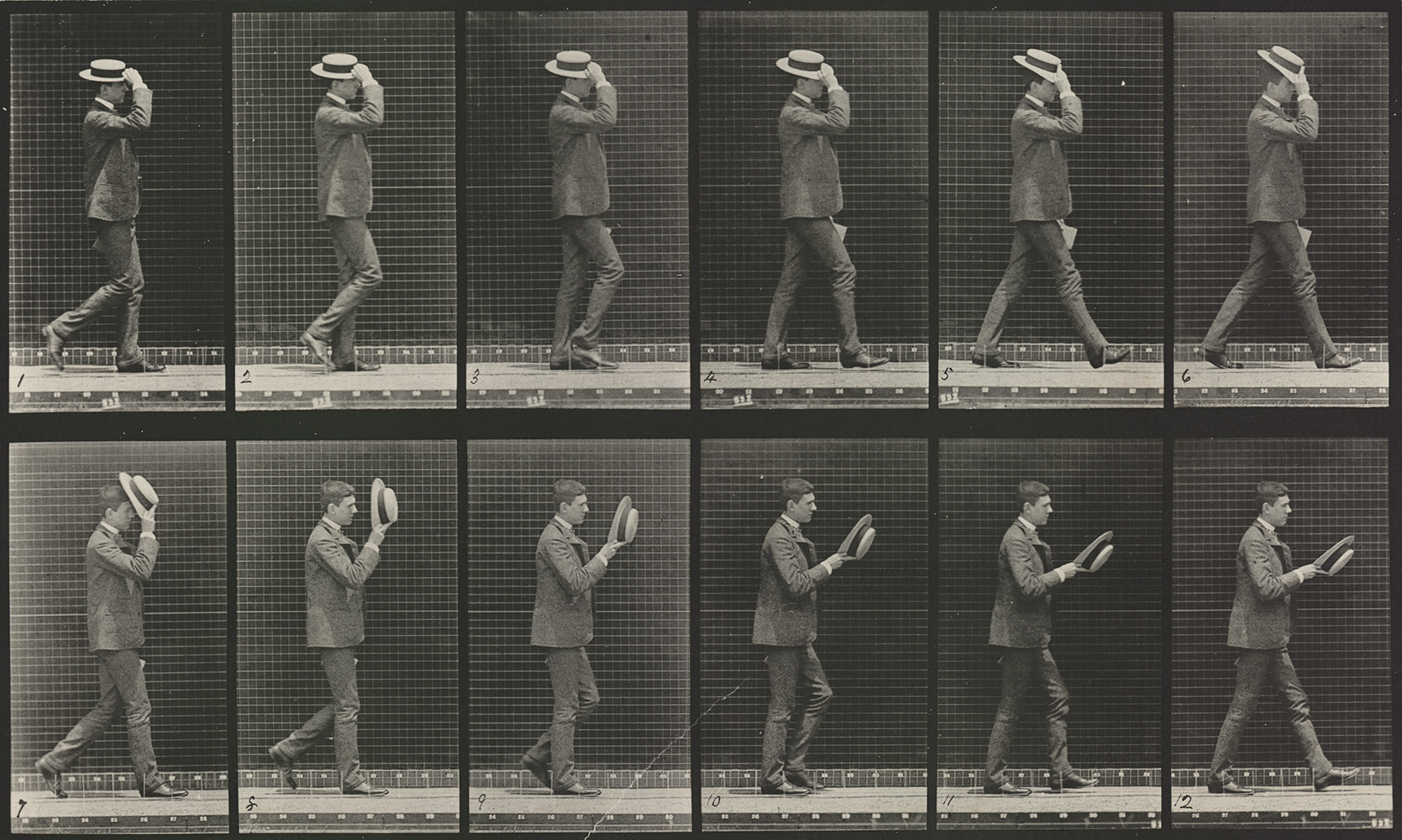 eadweard muybridge and harold edgerton Picturing motion in photography: when time stands still eadweard muybridge was the first to photograph precisely how animals move harold edgerton.