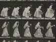 Eadweard Muybridge, Animal Locomotion, plate 483