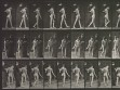 Eadweard Muybridge, Animal Locomotion, plate 541